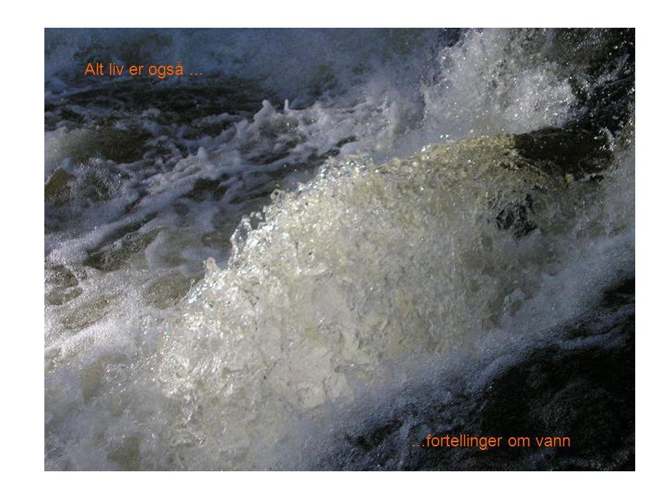 Tidsreiser på vannveien •Nye tider