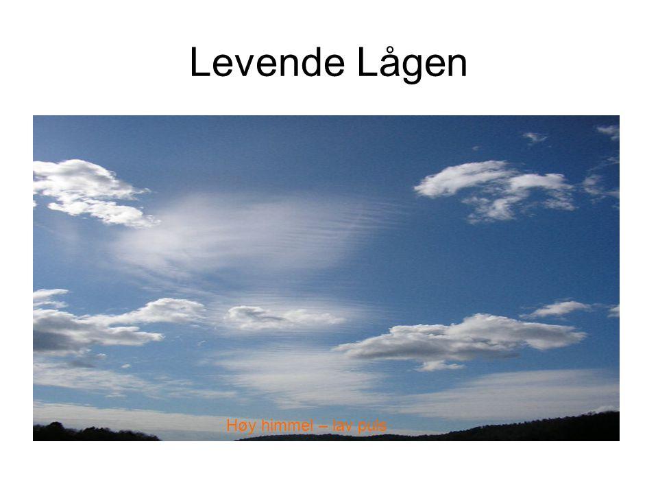Levende Lågen Høy himmel – lav puls