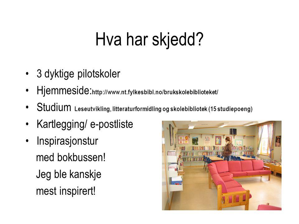 Hva har skjedd? •3 dyktige pilotskoler •Hjemmeside: http://www.nt.fylkesbibl.no/brukskolebiblioteket/ •Studium Leseutvikling, litteraturformidling og