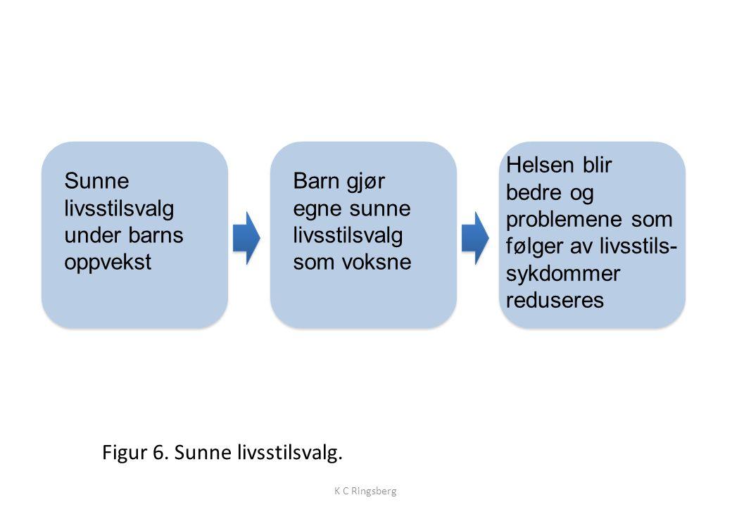 Figur 6.Sunne livsstilsvalg.