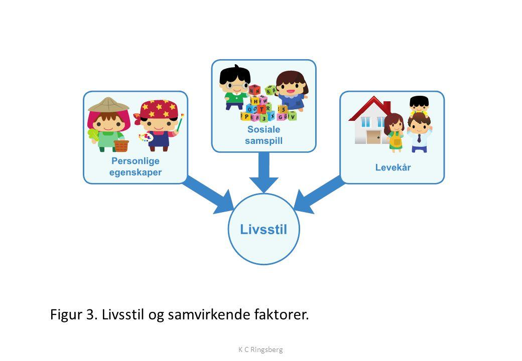 Figur 3. Livsstil og samvirkende faktorer. K C Ringsberg