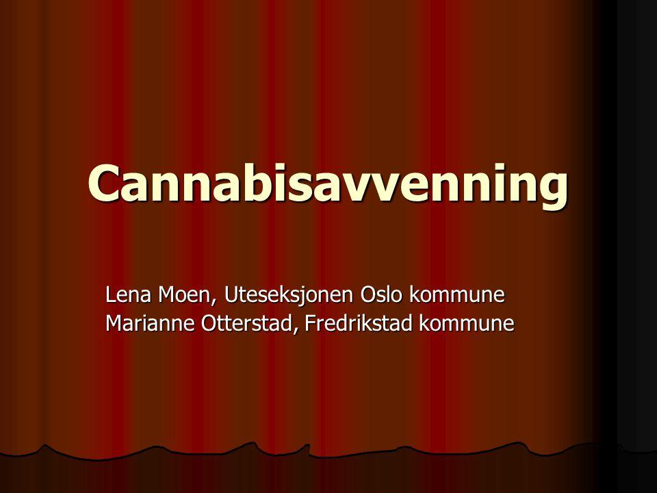 Cannabisavvenningskurs •Ungdommens stemme •Anerkjennelse og ikke-dømmende holdning •Viktigheten av gruppa •Endring – forskning og praksis •Veien videre