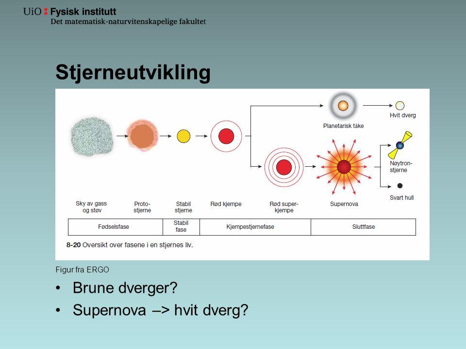 Stjerneutvikling Figur fra ERGO •Brune dverger? •Supernova –> hvit dverg?