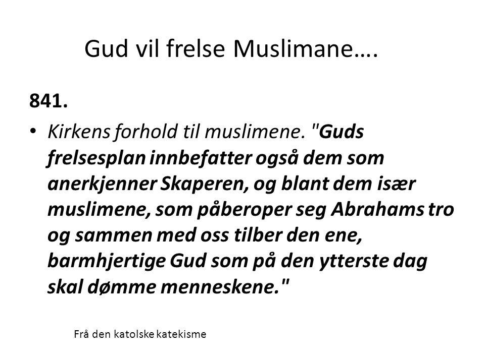 841. • Kirkens forhold til muslimene.