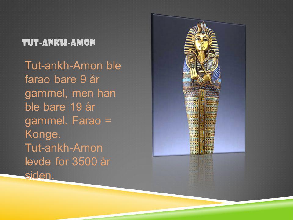 Tut-ankh-amon Tut-ankh-Amon ble farao bare 9 år gammel, men han ble bare 19 år gammel. Farao = Konge. Tut-ankh-Amon levde for 3500 år siden.