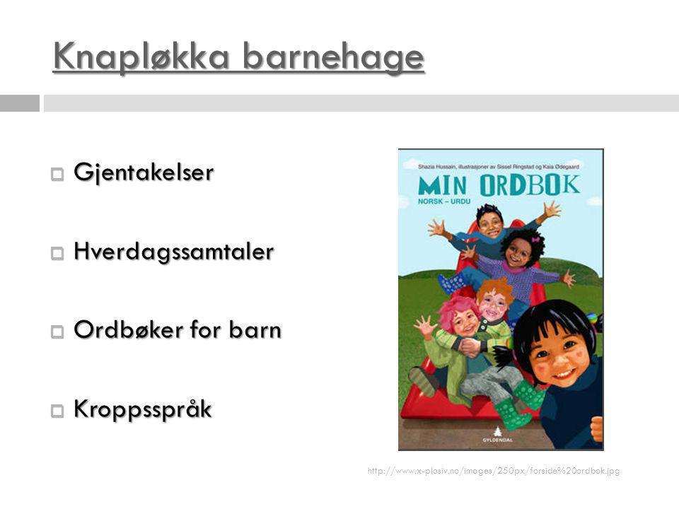 Knapløkka barnehage Knapløkka barnehage  Gjentakelser  Hverdagssamtaler  Ordbøker for barn  Kroppsspråk http://www.x-plosiv.no/images/250px/forsid