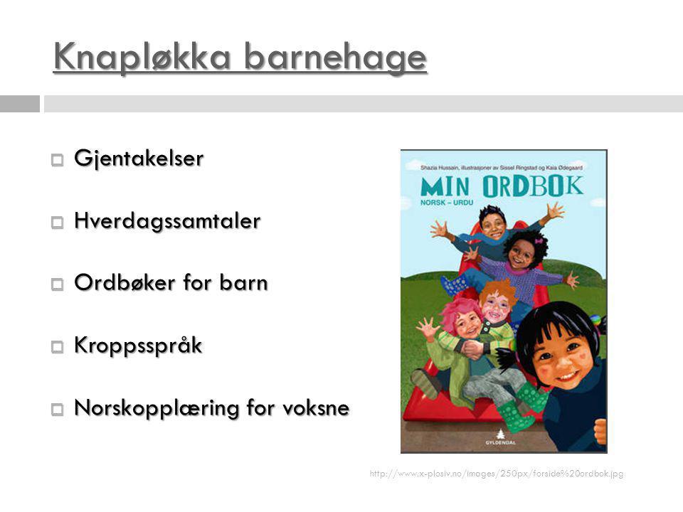 Knapløkka barnehage Knapløkka barnehage  Gjentakelser  Hverdagssamtaler  Ordbøker for barn  Kroppsspråk  Norskopplæring for voksne http://www.x-p