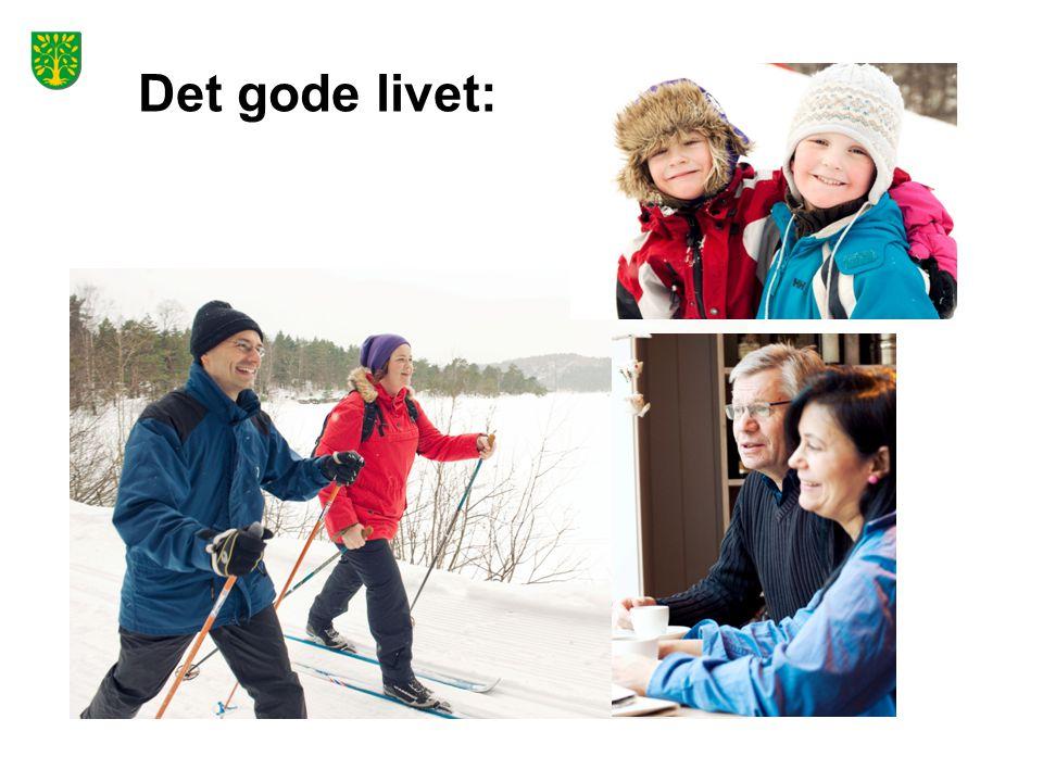 Det gode livet: