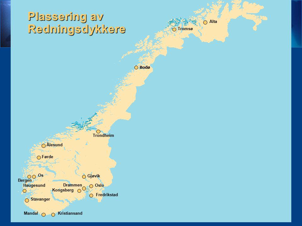 Ant.redn.dykkere319 Antall oppdrag417 Antall søk- dager93 Ant.