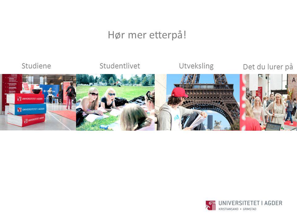 Studiene Studentlivet Det du lurer på Utveksling Hør mer etterpå!