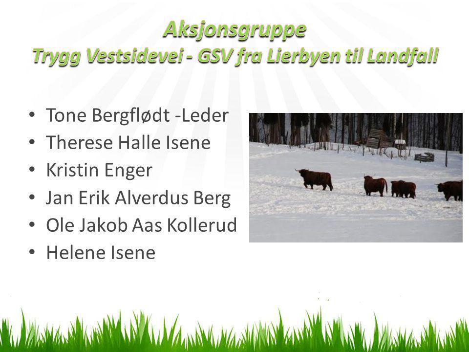 • Tone Bergflødt -Leder • Therese Halle Isene • Kristin Enger • Jan Erik Alverdus Berg • Ole Jakob Aas Kollerud • Helene Isene
