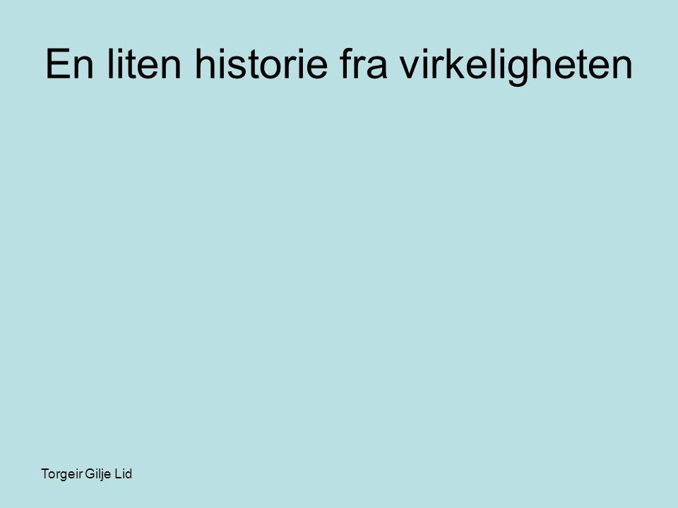 Torgeir Gilje Lid En liten historie fra virkeligheten