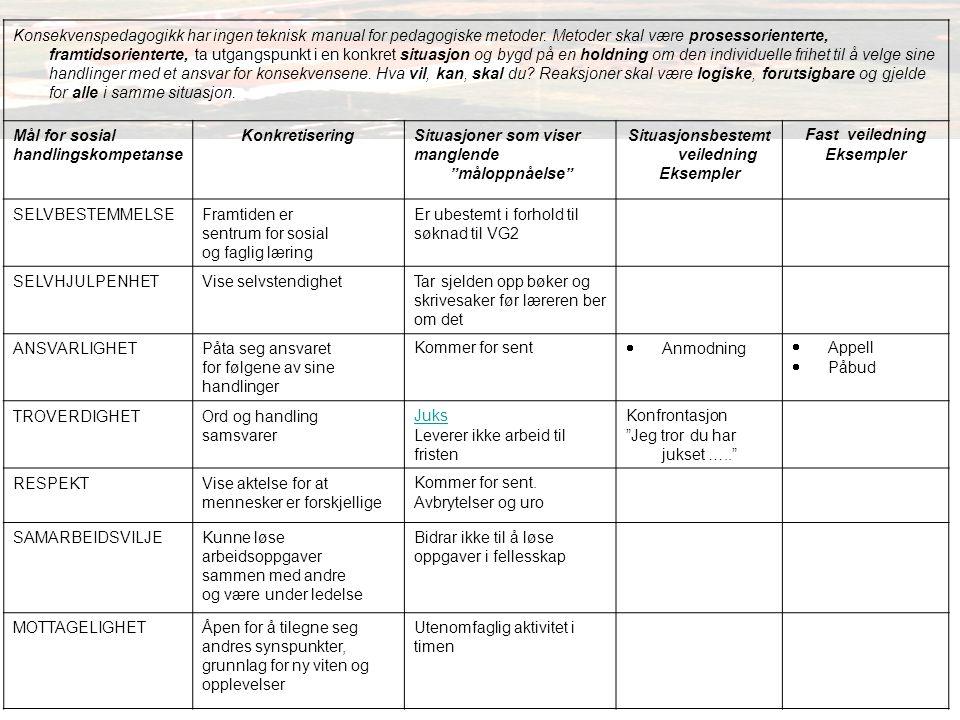 Konsekvenspedagogikk har ingen teknisk manual for pedagogiske metoder.