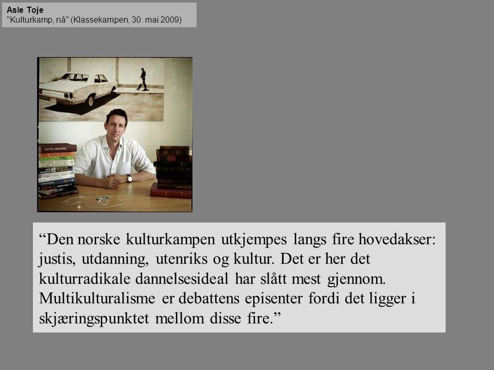 Den norske kulturkampen utkjempes langs fire hovedakser: justis, utdanning, utenriks og kultur.