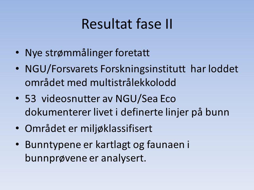 Resultat fase II • Nye strømmålinger foretatt • NGU/Forsvarets Forskningsinstitutt har loddet området med multistrålekkolodd • 53 videosnutter av NGU/
