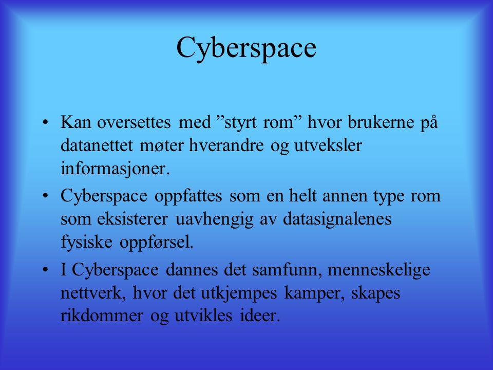 Cyberspace •Kan oversettes med styrt rom hvor brukerne på datanettet møter hverandre og utveksler informasjoner.
