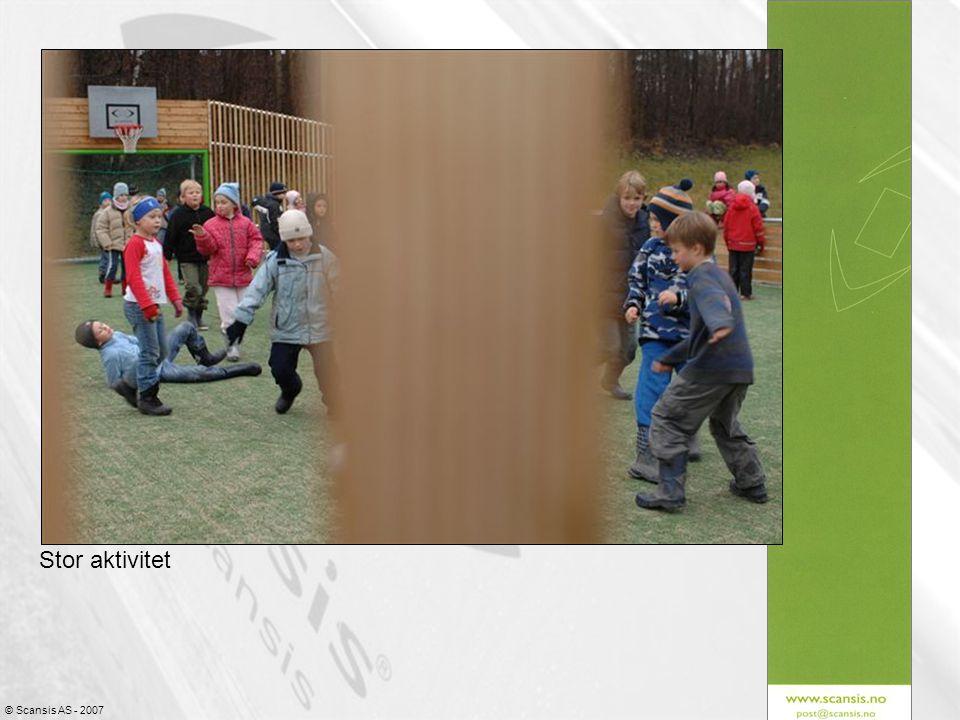 © Scansis AS - 2007 Stor aktivitet