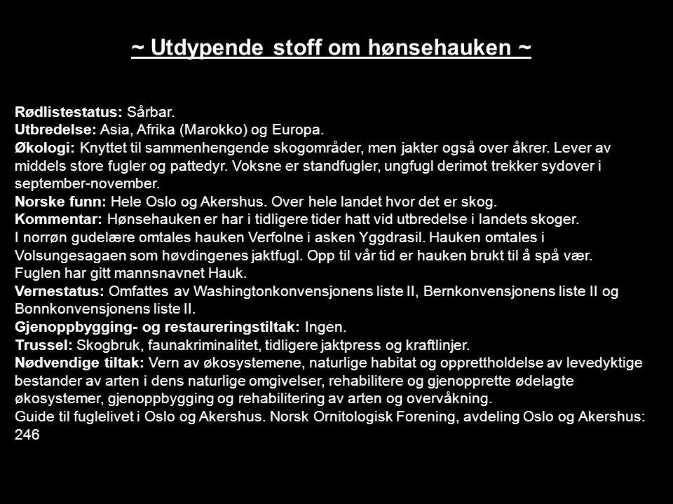 ~ Utdypende stoff om hønsehauken ~ Rødlistestatus: Sårbar.