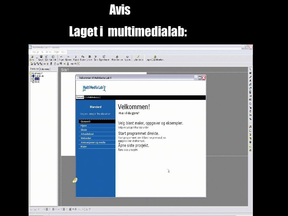 Avis Laget i multimedialab: