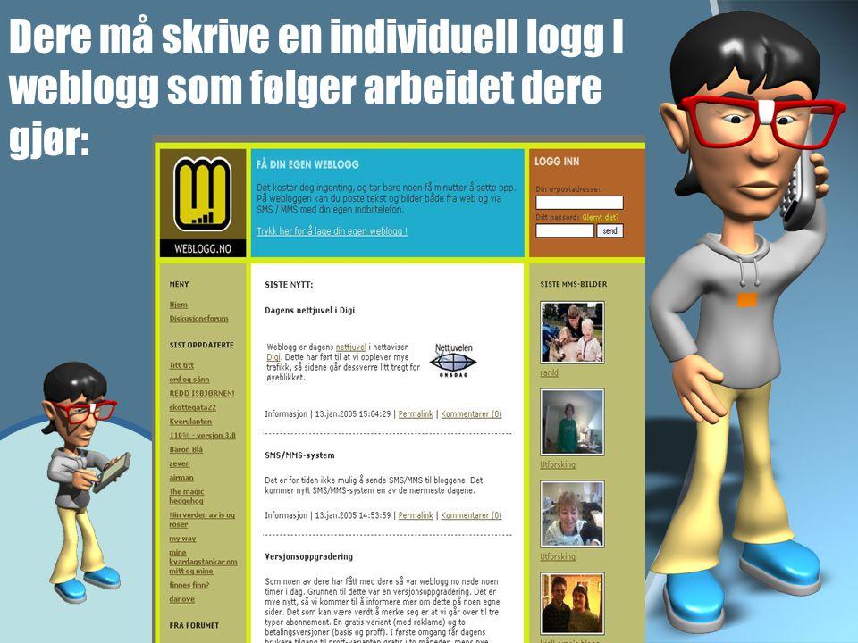 Dere må skrive en individuell logg I weblogg som følger arbeidet dere gjør:
