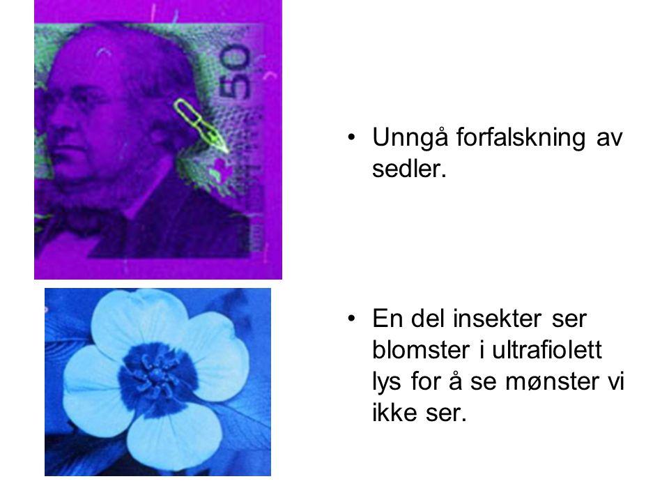 •Unngå forfalskning av sedler. •En del insekter ser blomster i ultrafiolett lys for å se mønster vi ikke ser.