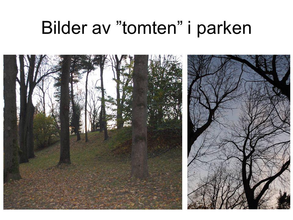 """Bilder av """"tomten"""" i parken"""