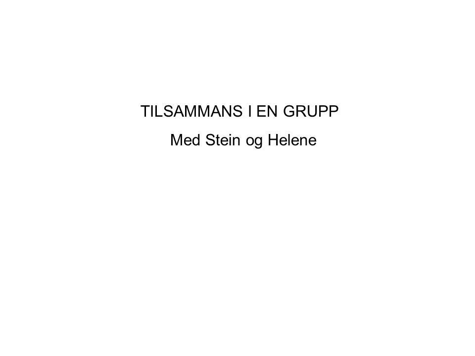 TILSAMMANS I EN GRUPP Med Stein og Helene