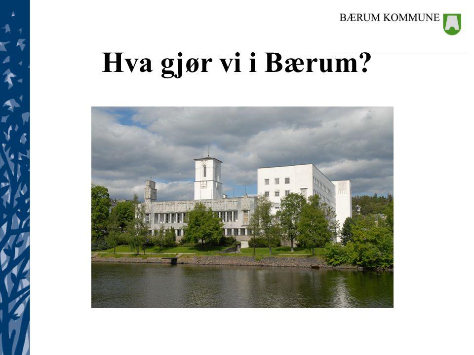 Kommunalsjefene Hva gjør vi i Bærum?