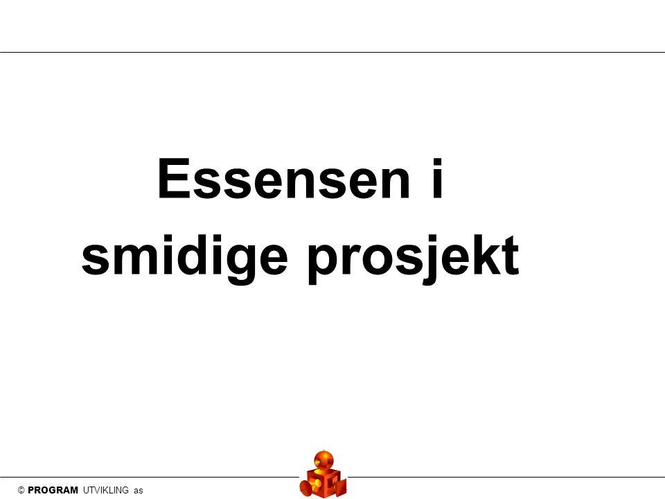 © PROGRAM UTVIKLING as Essensen i smidige prosjekt