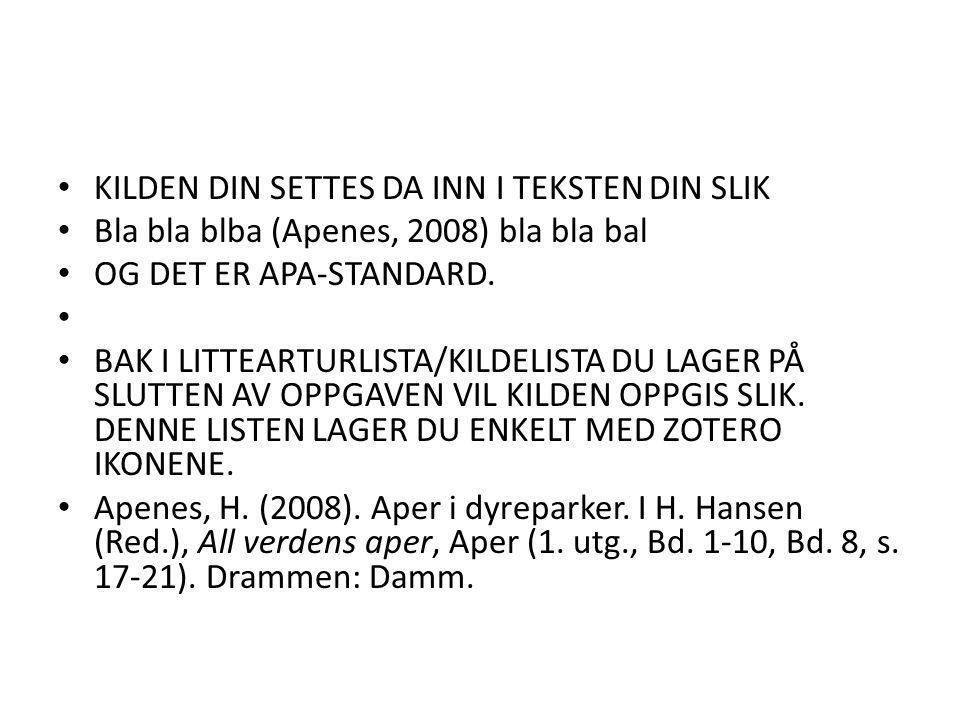 • KILDEN DIN SETTES DA INN I TEKSTEN DIN SLIK • Bla bla blba (Apenes, 2008) bla bla bal • OG DET ER APA-STANDARD.