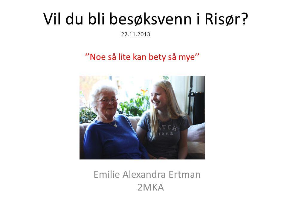 Vil du bli besøksvenn i Risør.