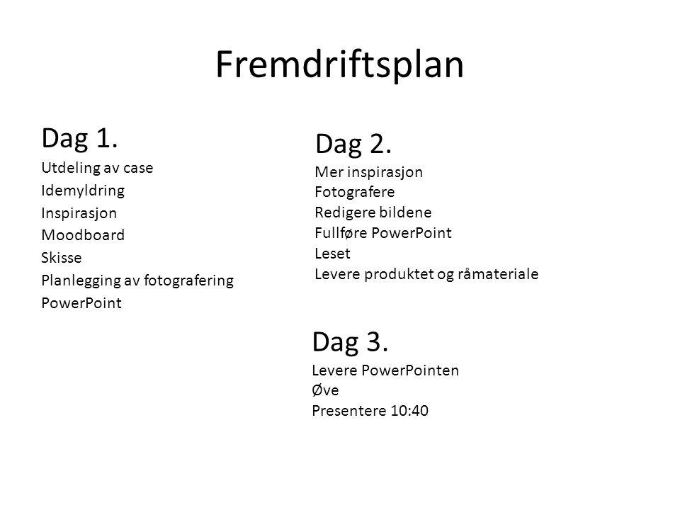 Fremdriftsplan Dag 1.