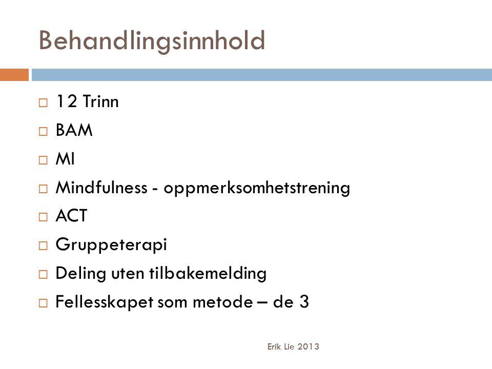 Behandlingsinnhold Erik Lie 2013  12 Trinn  BAM  MI  Mindfulness - oppmerksomhetstrening  ACT  Gruppeterapi  Deling uten tilbakemelding  Fellesskapet som metode – de 3
