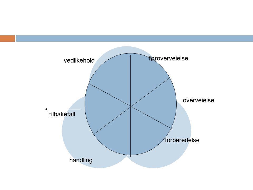 Verdier Erik Lie 2013  Personen anses som ansvarlig og tilregnelig selv om han/hun erfarer å være situasjonsstyrt (årsaksbestemt).