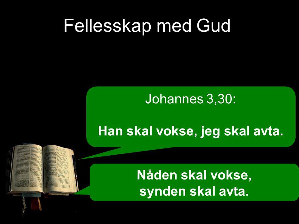 Johannes 3,30: Han skal vokse, jeg skal avta. Nåden skal vokse, synden skal avta.