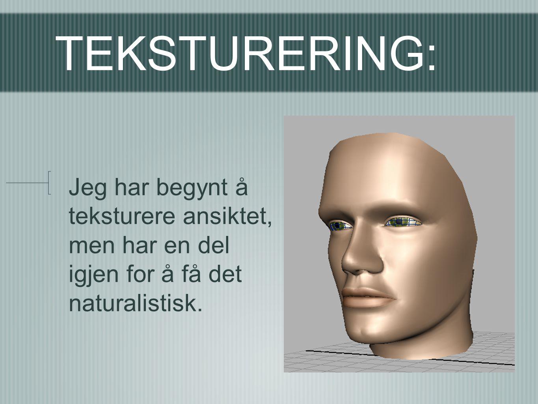 TEKSTURERING: Jeg har begynt å teksturere ansiktet, men har en del igjen for å få det naturalistisk.