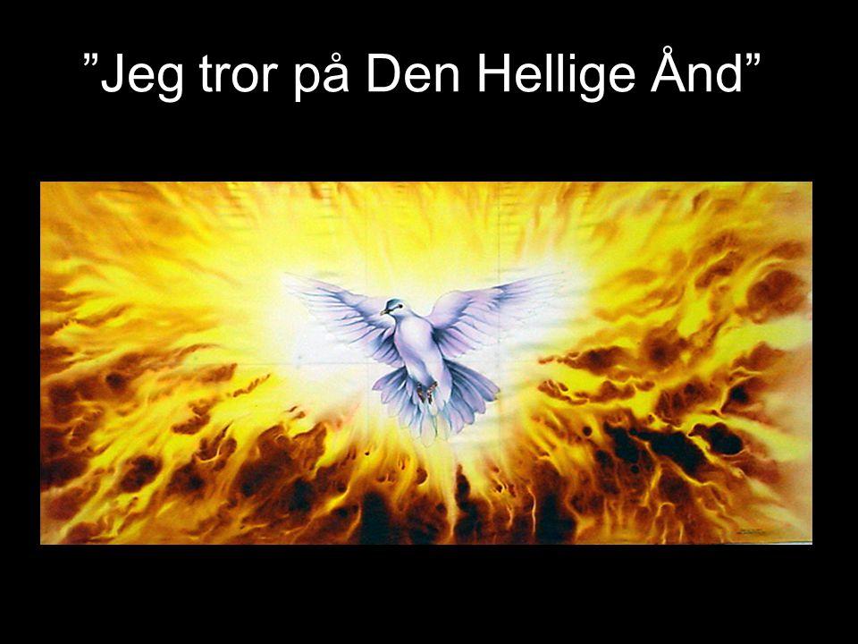 APOSTOLICUM 3.artikkel: Jeg tror på Den Hellige Ånd, en hellig, allmenn kirke, de helliges samfunn, syndenes forlatelse, legemets oppstandelse og det evige liv.