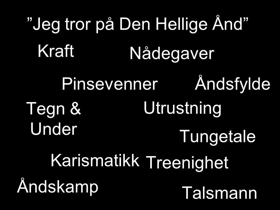 Kraft Åndsfylde Nådegaver Pinsevenner Talsmann Åndskamp Tungetale Tegn & Under Treenighet Karismatikk Utrustning