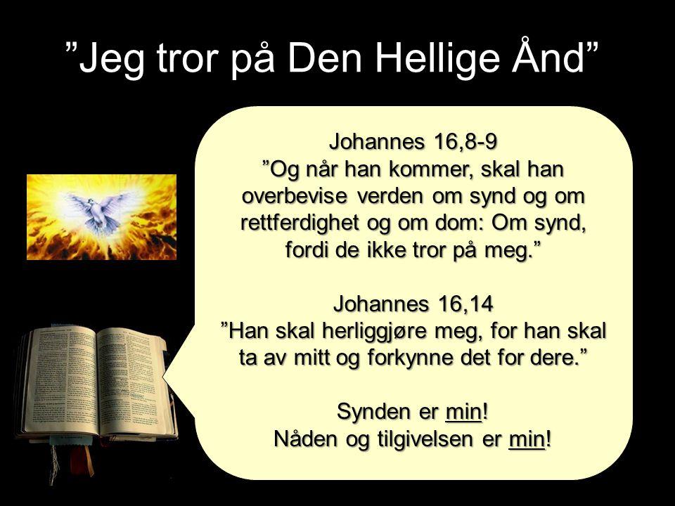 """""""Jeg tror på Den Hellige Ånd"""" Johannes 16,8-9 """"Og når han kommer, skal han overbevise verden om synd og om rettferdighet og om dom: Om synd, fordi de"""