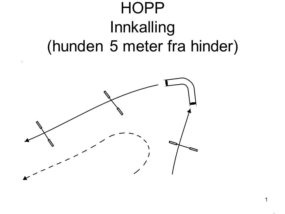 1 HOPP Innkalling (hunden 5 meter fra hinder)