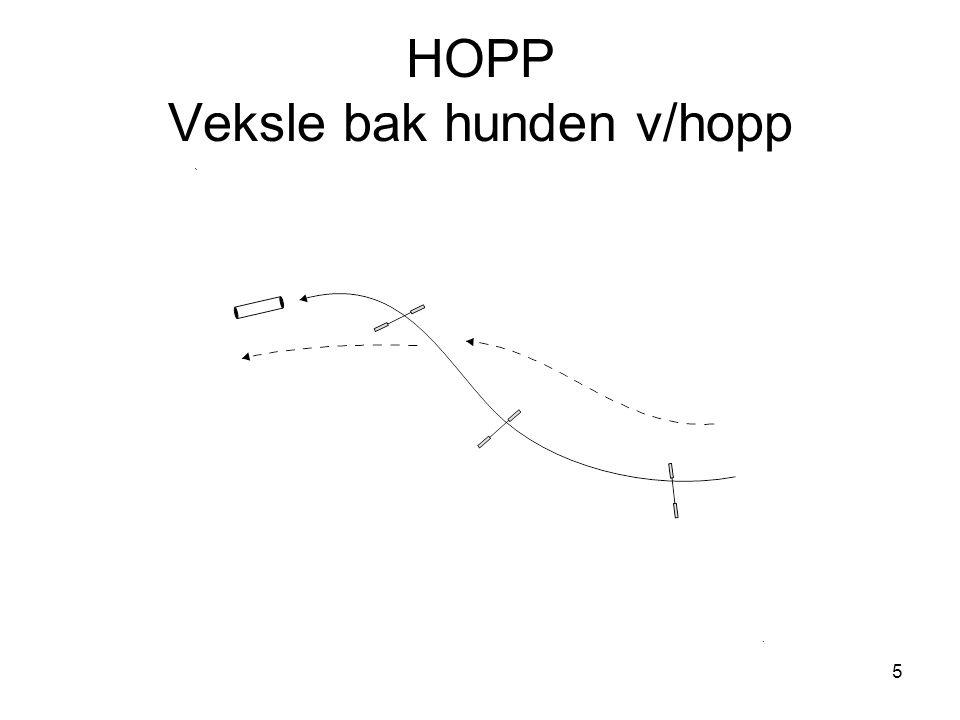 5 HOPP Veksle bak hunden v/hopp