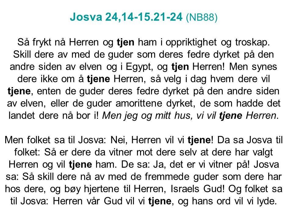 Josva 24,14-15.21-24 (NB88) Så frykt nå Herren og tjen ham i oppriktighet og troskap. Skill dere av med de guder som deres fedre dyrket på den andre s