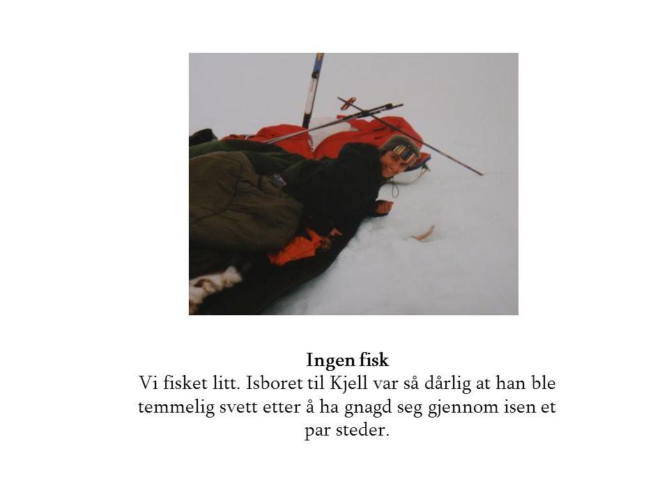 Ingen fisk Vi fisket litt. Isboret til Kjell var så dårlig at han ble temmelig svett etter å ha gnagd seg gjennom isen et par steder.