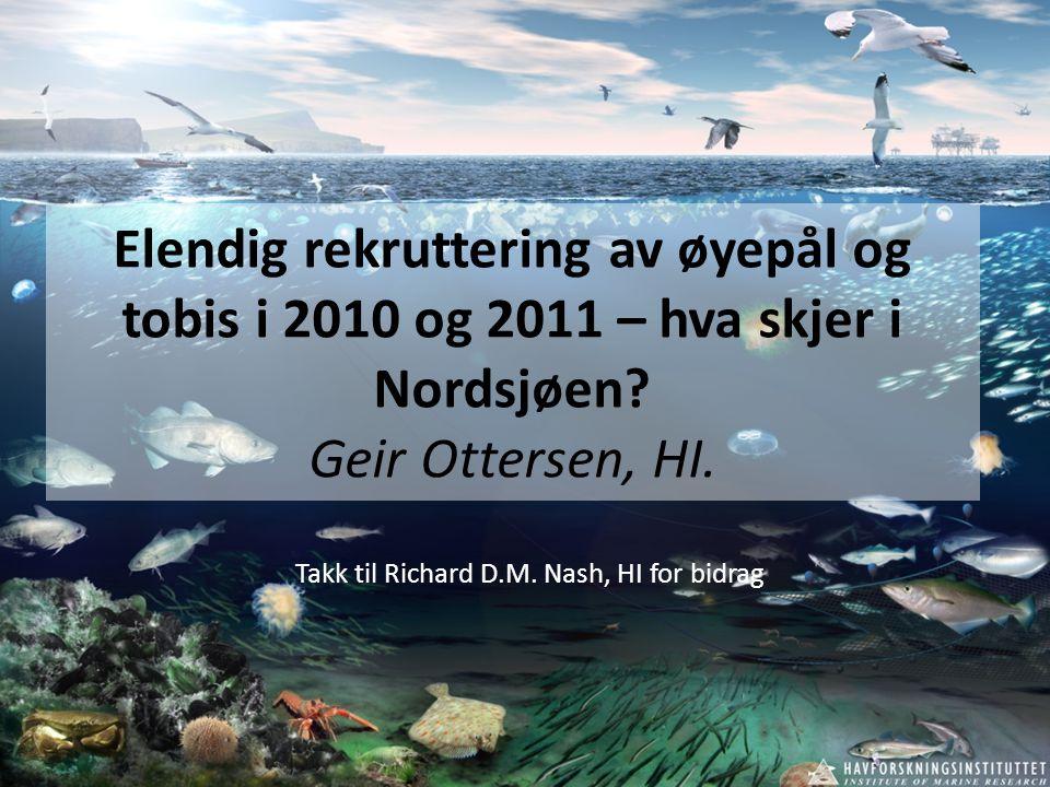 Elendig rekruttering av øyepål og tobis i 2010 og 2011 – hva skjer i Nordsjøen? Geir Ottersen, HI. Takk til Richard D.M. Nash, HI for bidrag