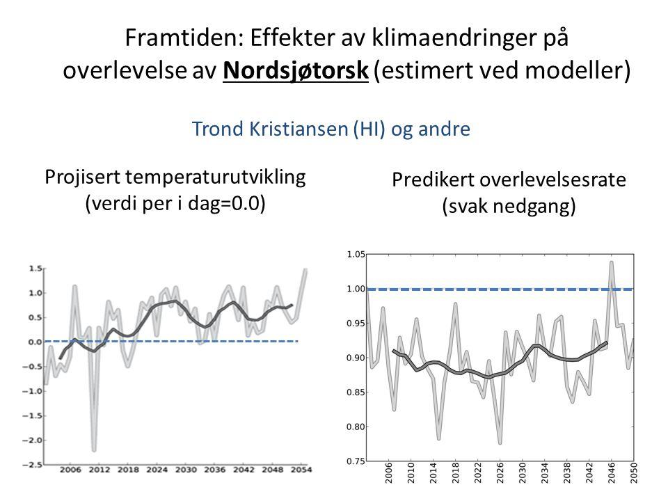 Framtiden: Effekter av klimaendringer på overlevelse av Nordsjøtorsk (estimert ved modeller) Trond Kristiansen (HI) og andre Predikert overlevelsesrate (svak nedgang) Projisert temperaturutvikling (verdi per i dag=0.0)