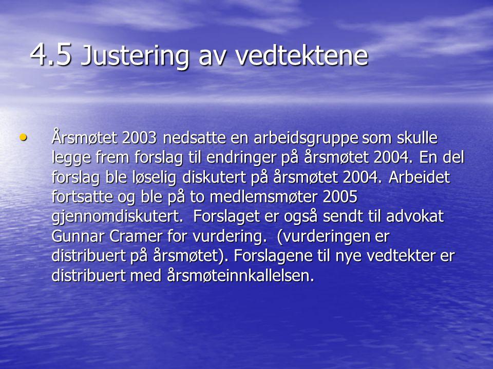4.5 Justering av vedtektene • Årsmøtet 2003 nedsatte en arbeidsgruppe som skulle legge frem forslag til endringer på årsmøtet 2004.