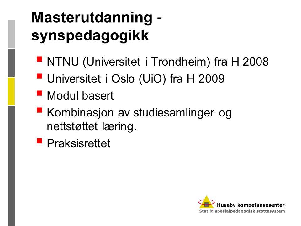 Masterutdanning - synspedagogikk  NTNU (Universitet i Trondheim) fra H 2008  Universitet i Oslo (UiO) fra H 2009  Modul basert  Kombinasjon av stu