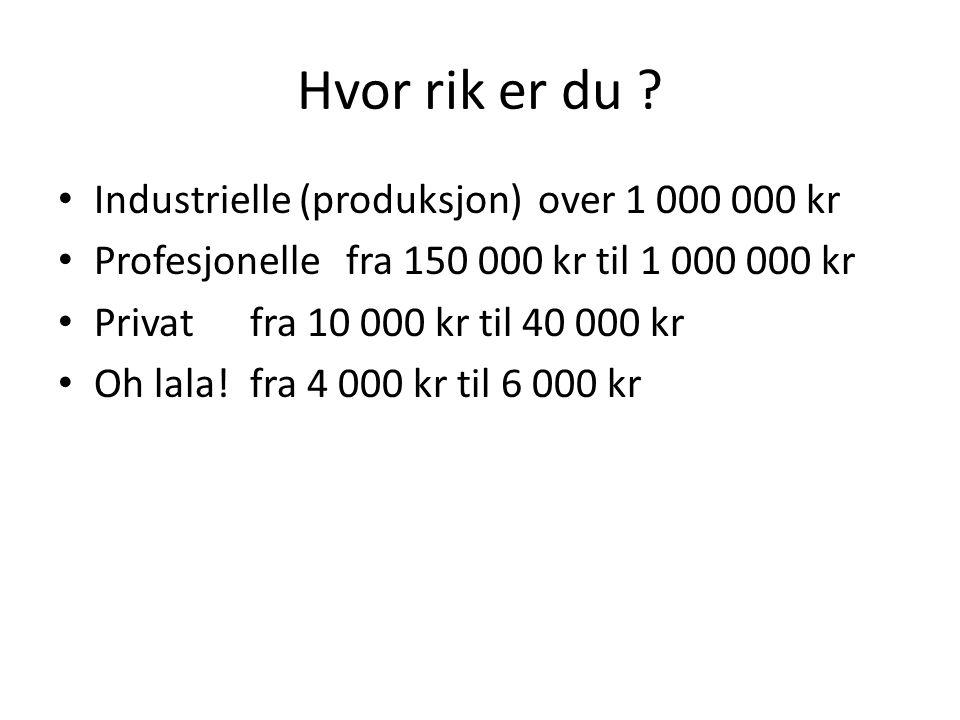 Hvor rik er du ? • Industrielle (produksjon)over 1 000 000 kr • Profesjonellefra 150 000 kr til 1 000 000 kr • Privat fra 10 000 kr til 40 000 kr • Oh