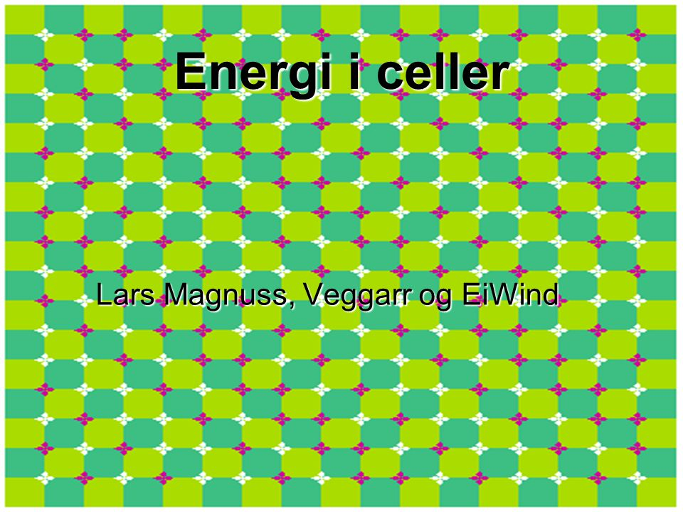Energi i celler Lars Magnuss, Veggarr og EiWind
