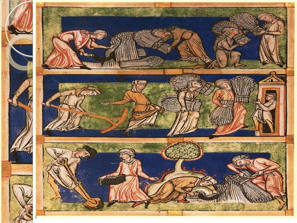 1000-tallet: Landbruket i vekst  Nedhugging av skog  Rydding av land  Drenering  Varmere klima  Nye metoder, som bruk av plog og hest  Utvikling